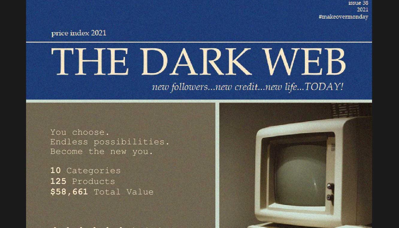 Viz of Dark Web Price Index 2021