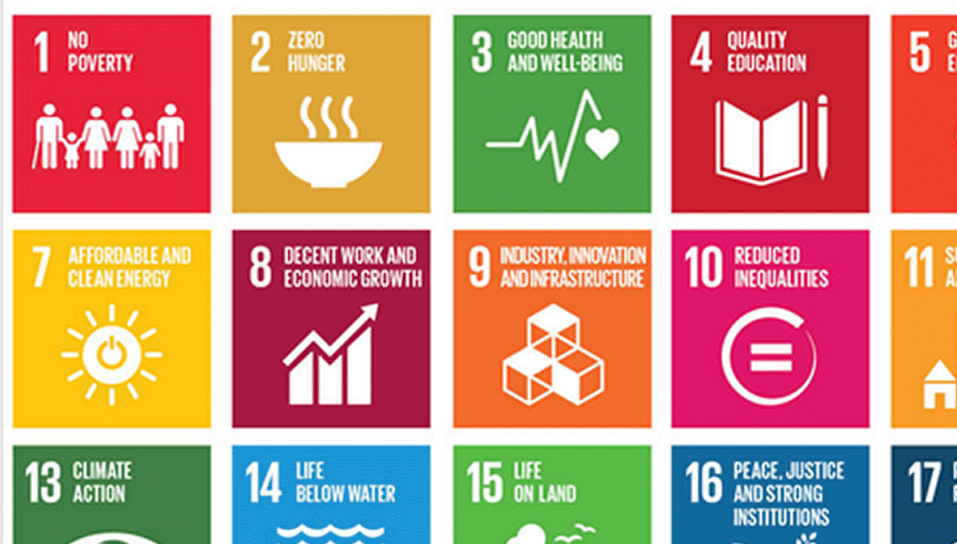 how to achieve a sustainable world