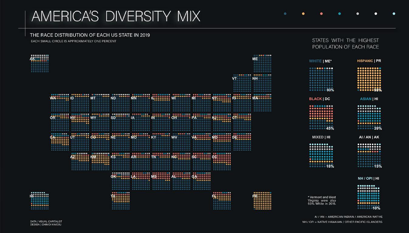 Viz of America's Diversity Mix