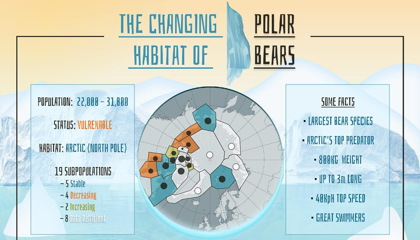 Viz of Polar bears habitat