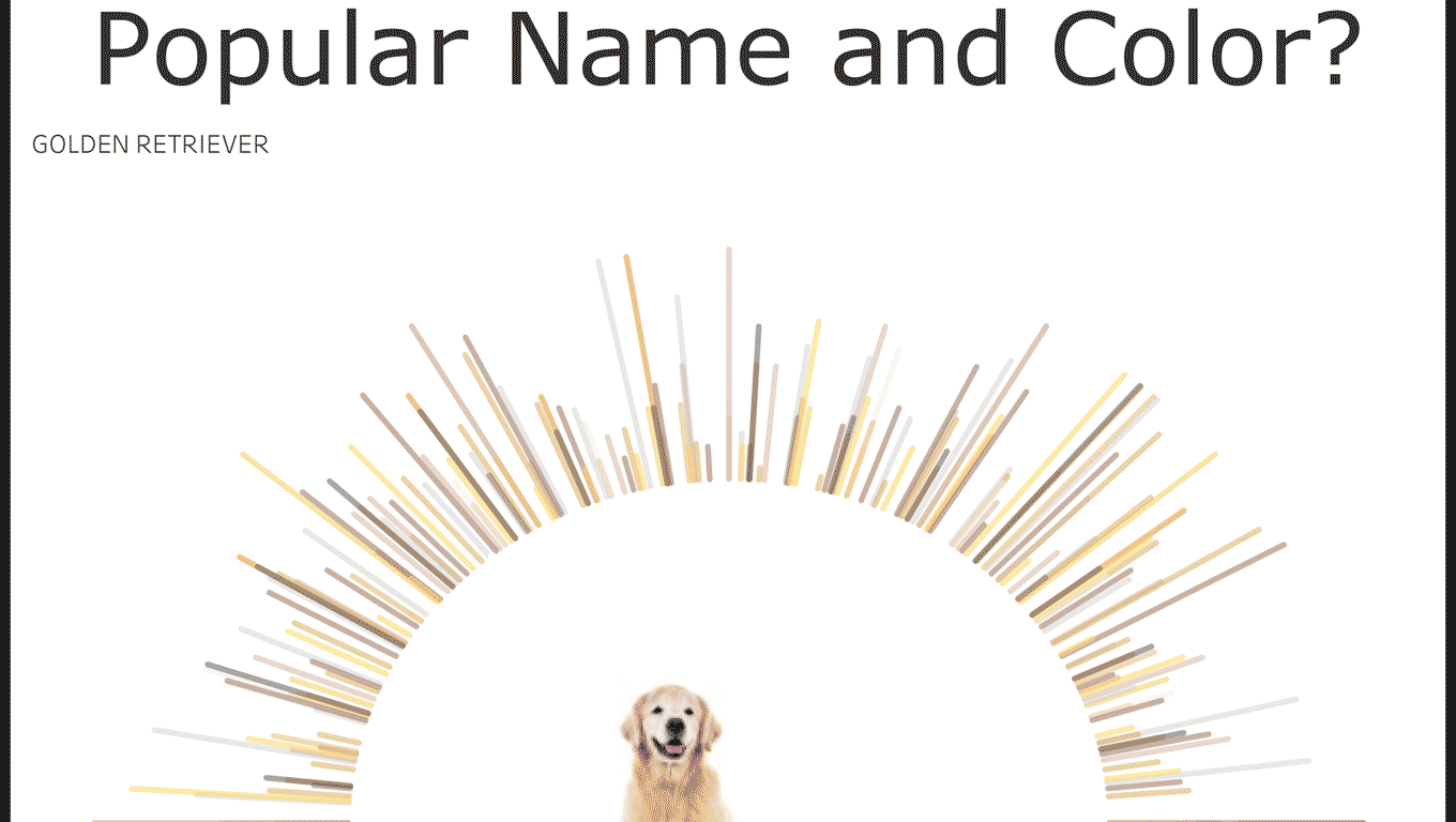 Dogs Popular Colors and Name