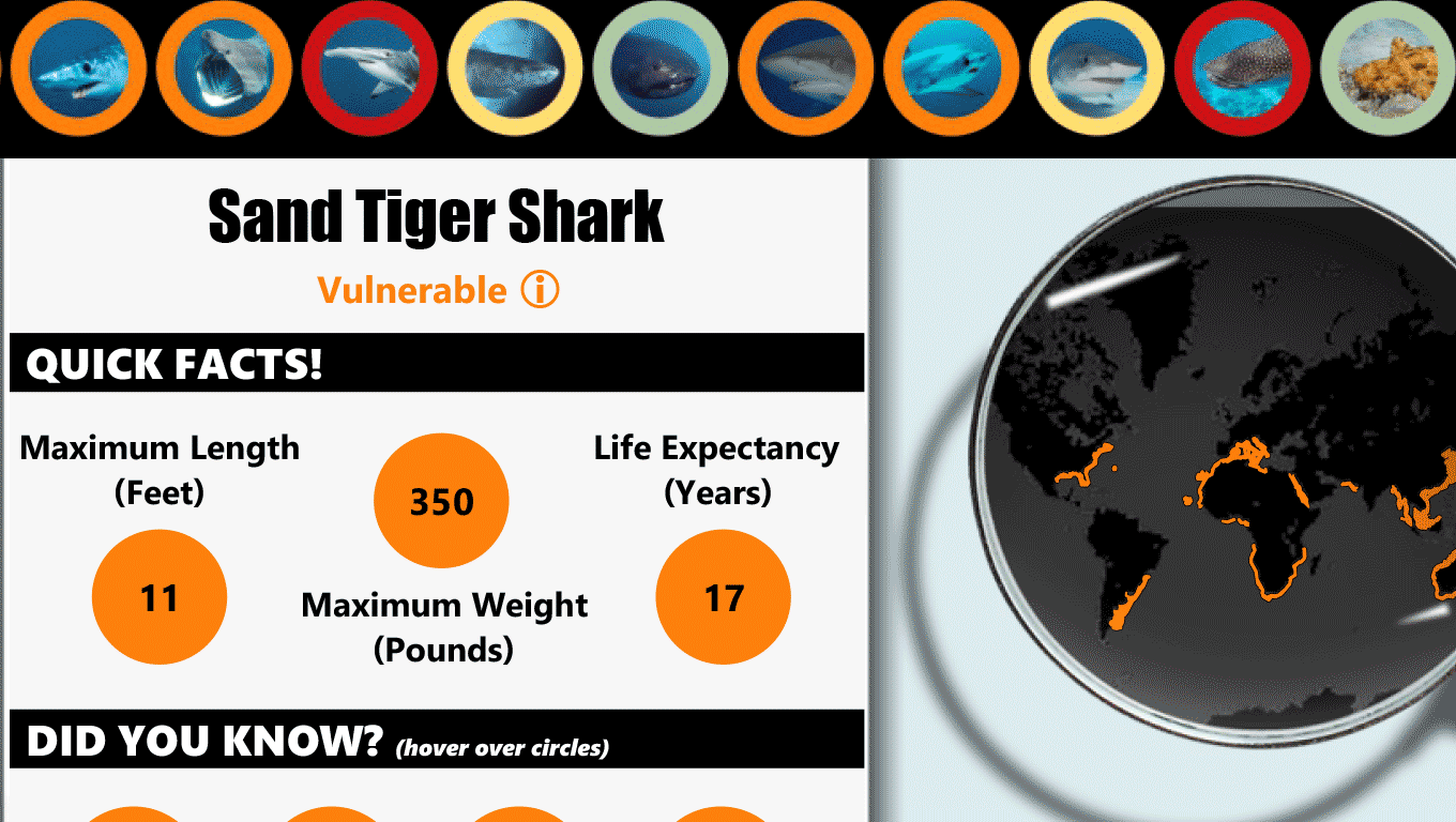 Details about sand tiger sharks, including where in the world these sharks live
