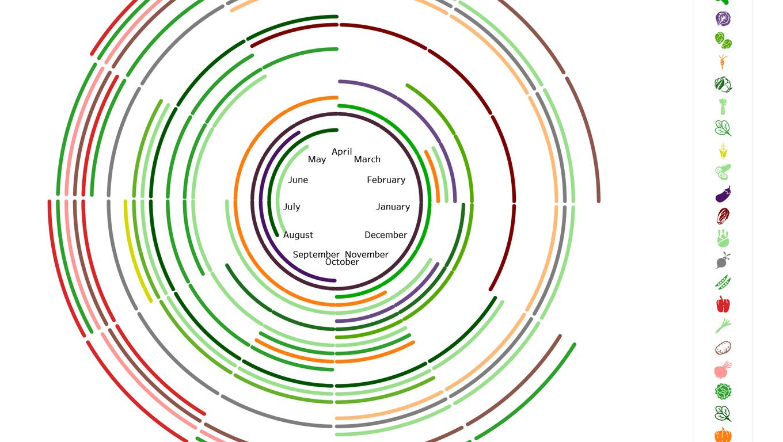 Radar chart of vegetable seasons colored by vegetable