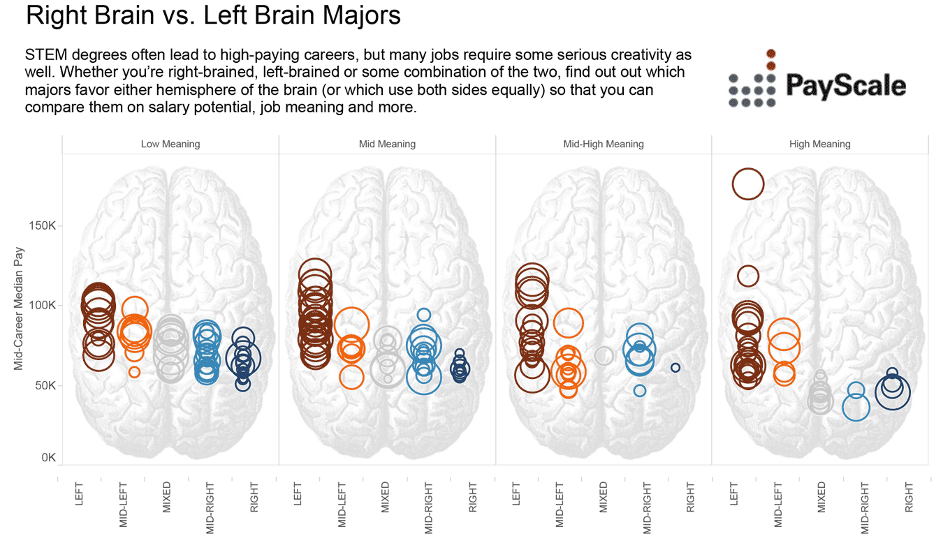 STEM Degrees and the Brains