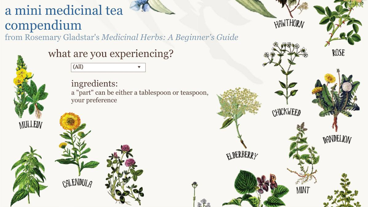 Medicinal tea recipes based on your symptom selection