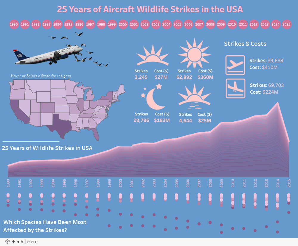 Aircraft Wildlife Strikes
