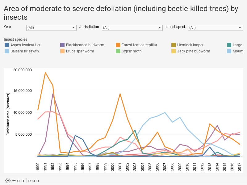 Forest area containing defoliated or beetle-killed trees
