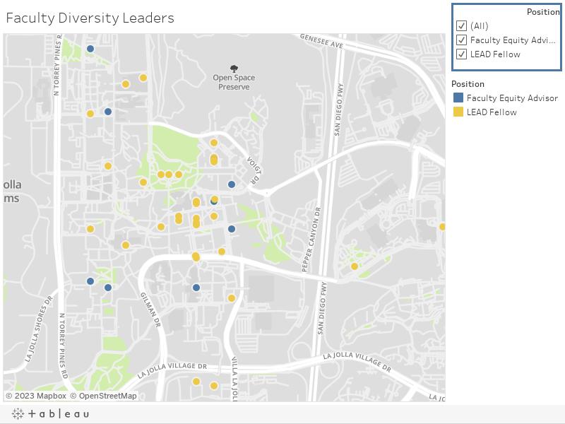 Faculty Diversity Leaders