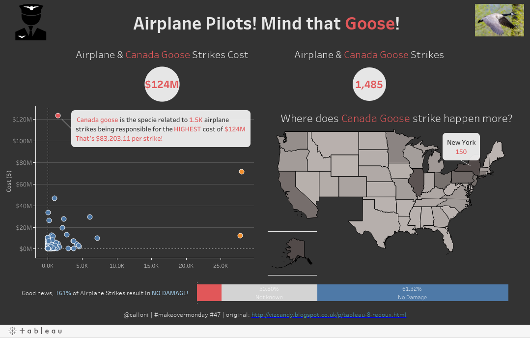 Airplane Pilots! Be aware of the Canada Goose!