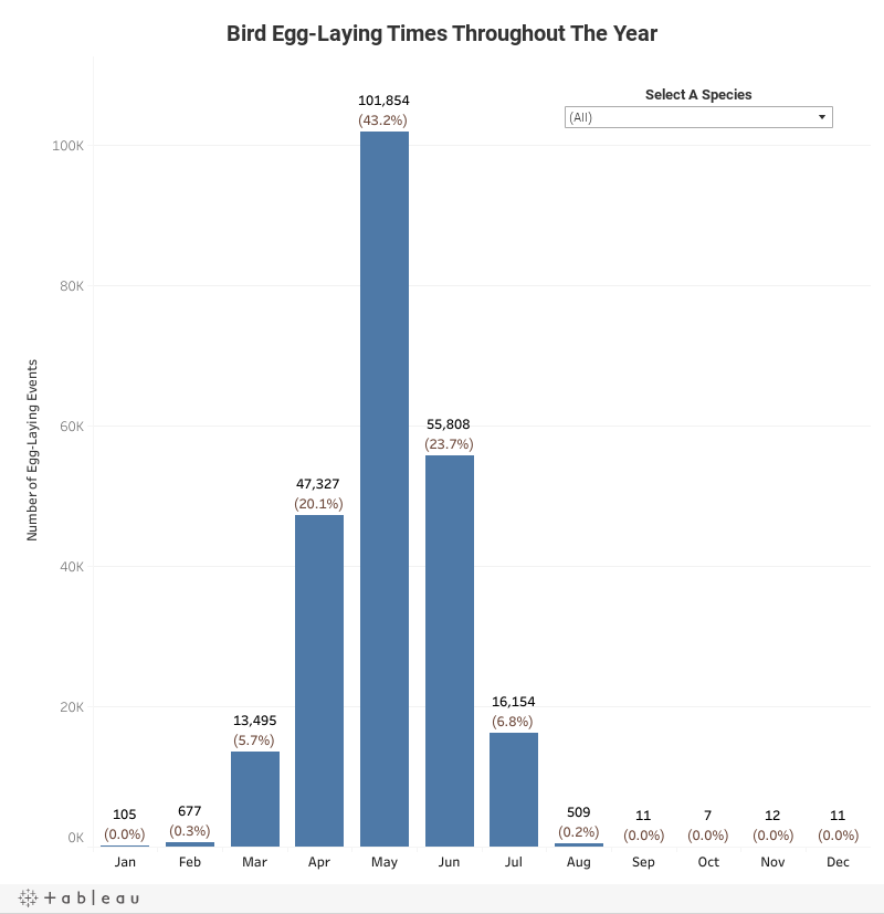 Bird Egg-Laying Events Throughout The Year Dashboard