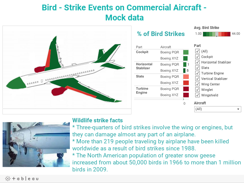 Workbook: Bird Strike Events on Commercial Aircraft