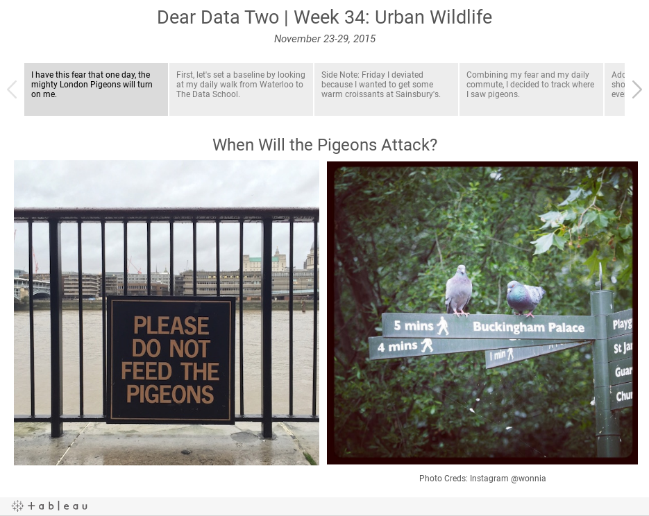 Dear Data Two | Week 34: Urban WildlifeNovember 23-29, 2015