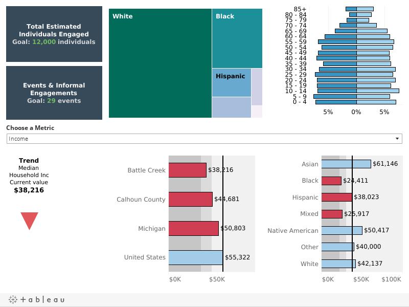 Population Disparities Dashboard