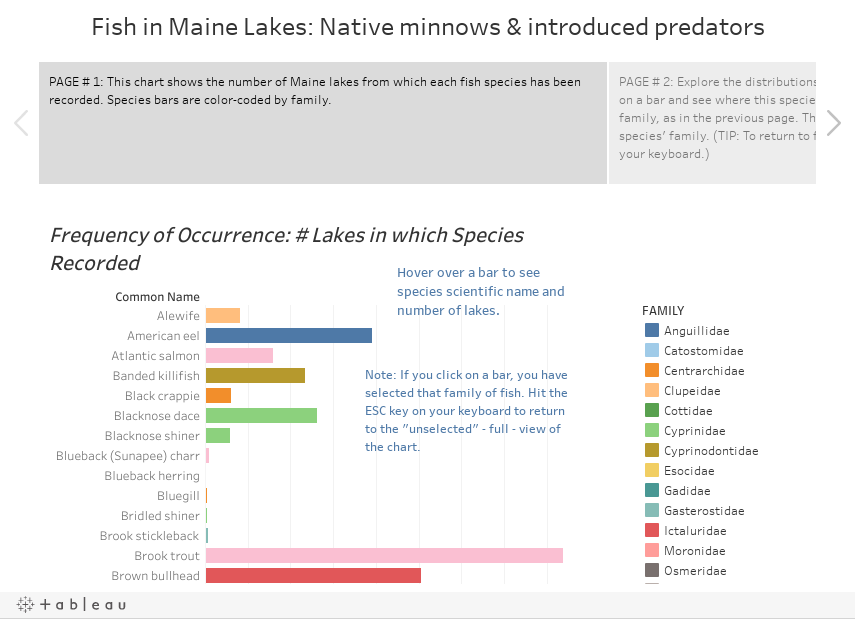 Fish in Maine Lakes: Native minnows & introduced predators