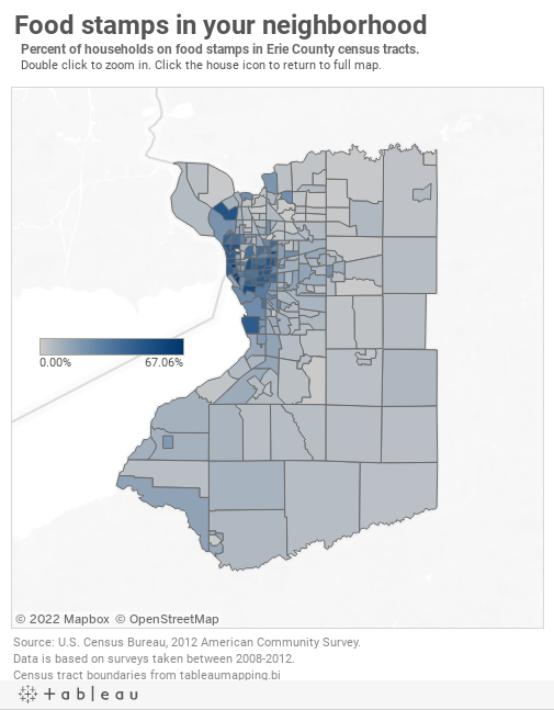 Erie County food stamp usage