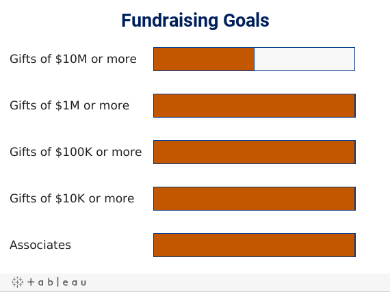 Fundraising Goals for First 100 Days