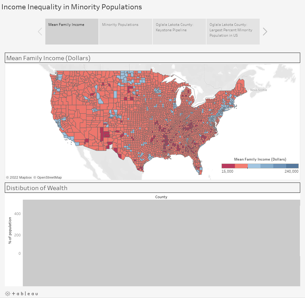 Income Inequality in Minority Populations