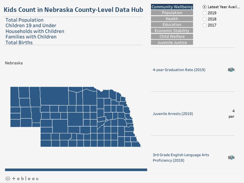 County-Level Data