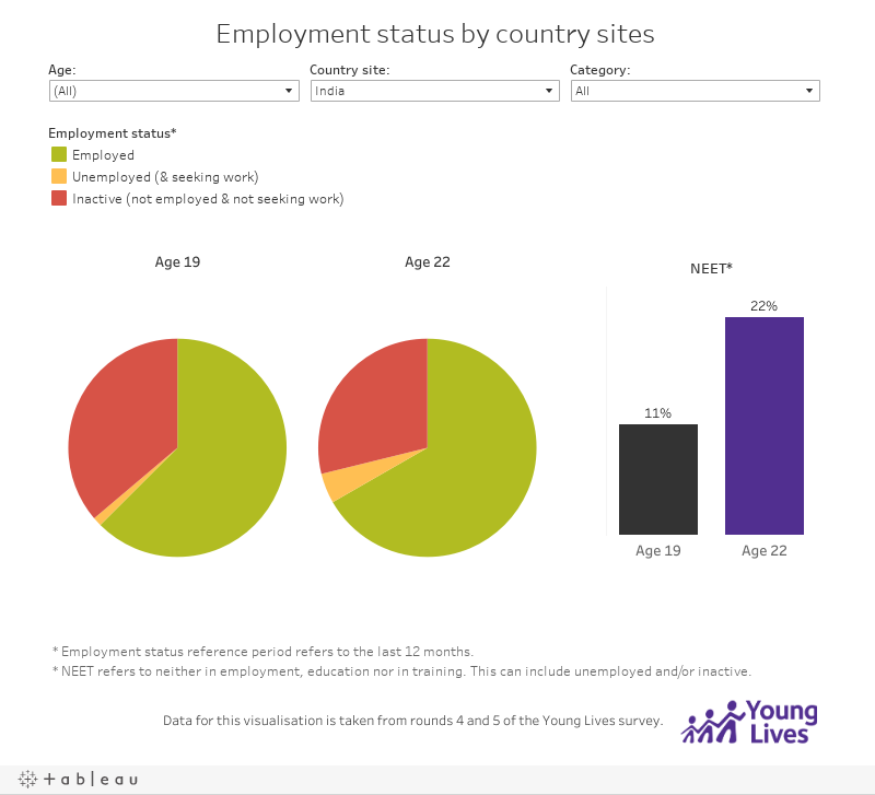 Employment status by country sites