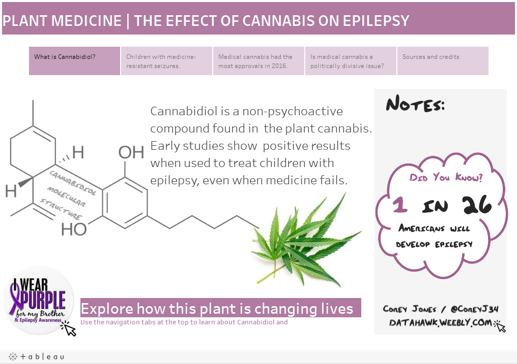 PLANT MEDICINE | THE EFFECT OF CANNABIS ON EPILEPSY