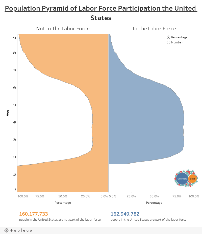 Population Pyramid of Labor Force Participation the United States