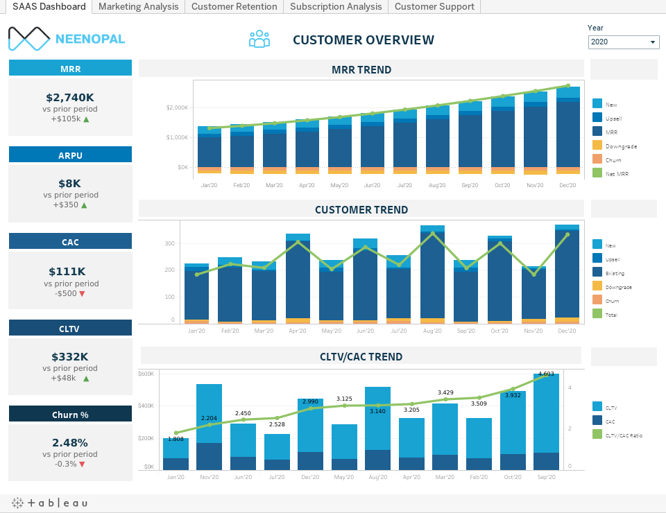 customer overview in saas dashboard
