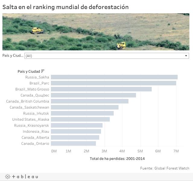 Salta en el ranking mundial de deforestación