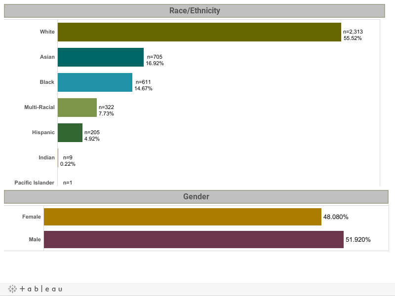 Race/Ethnicity Dashboard