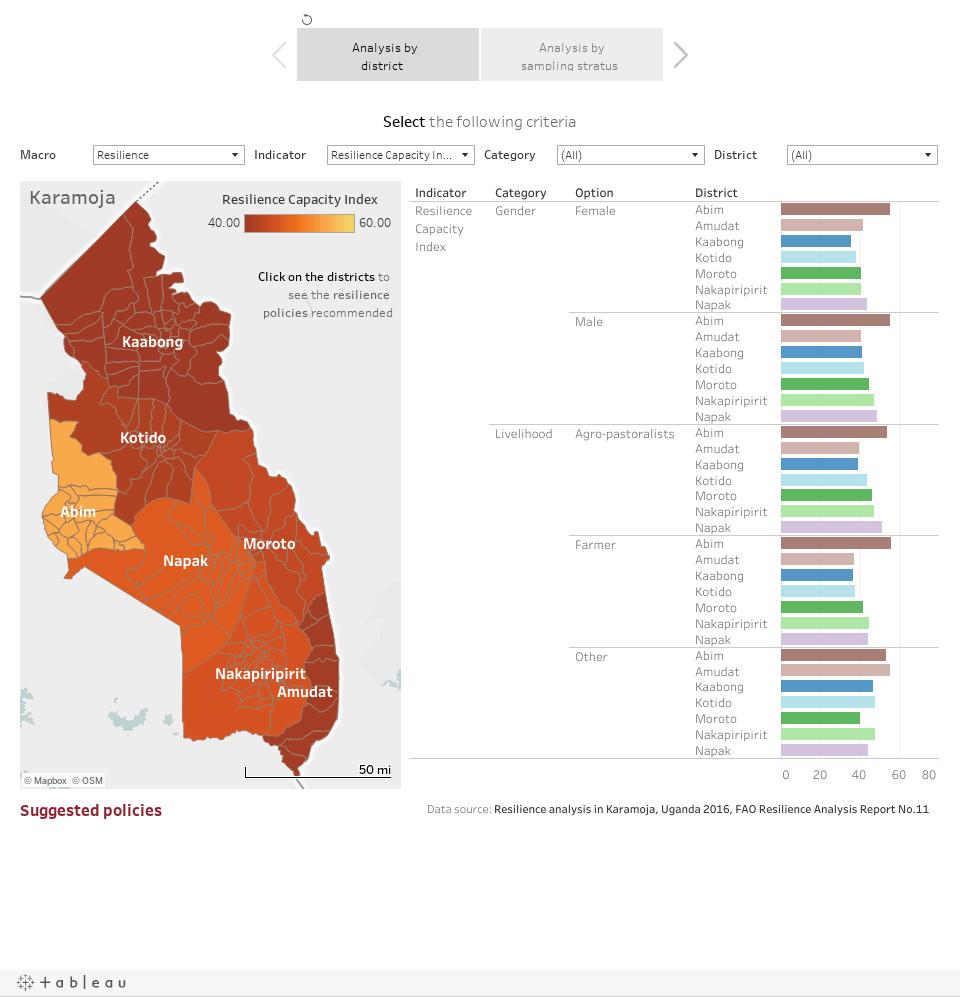 Resilience analysis in Karamoja