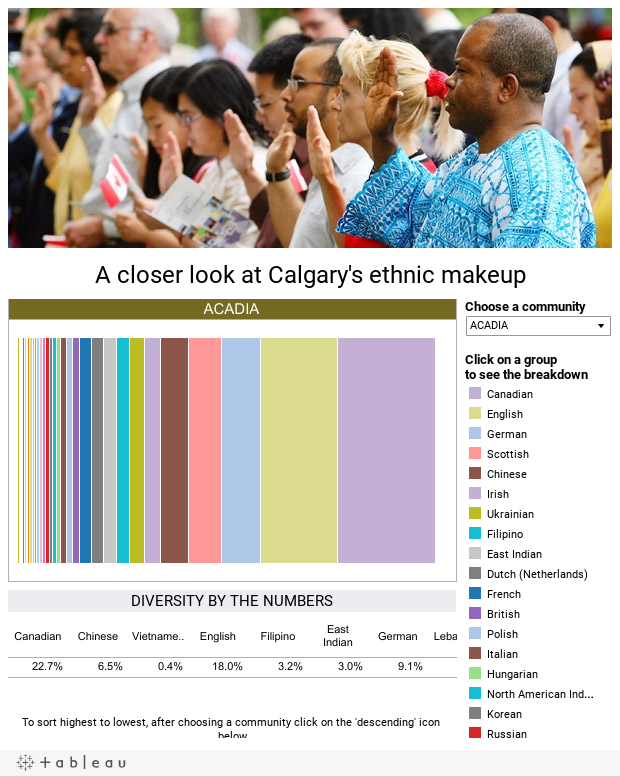 A closer look at Calgary's ethnic makeup