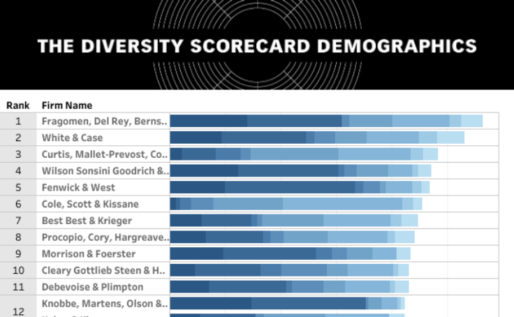 Workbook: Diversity Scorecard Demographics