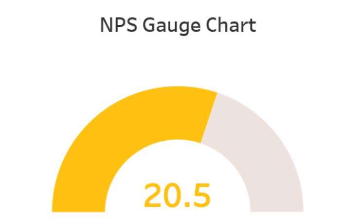 Workbook: NPS Gauge Chart