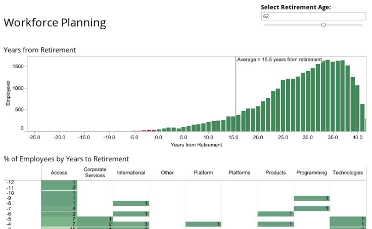 workforce plan template example - workbook workforce planning